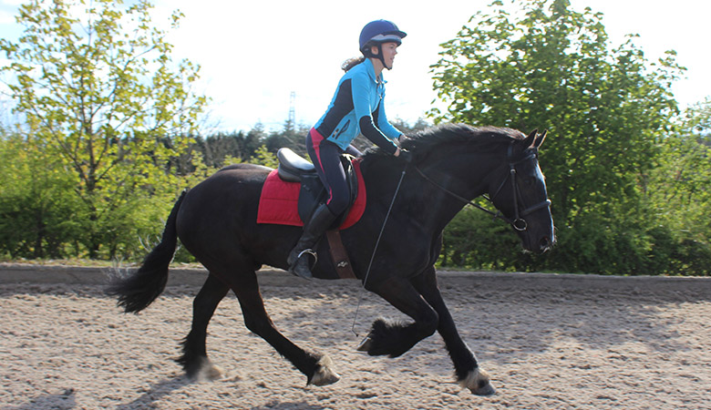 horse riding centre lessons rochdale bolton