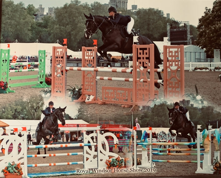Jumping-for-candy-for-sale-horse-bolton