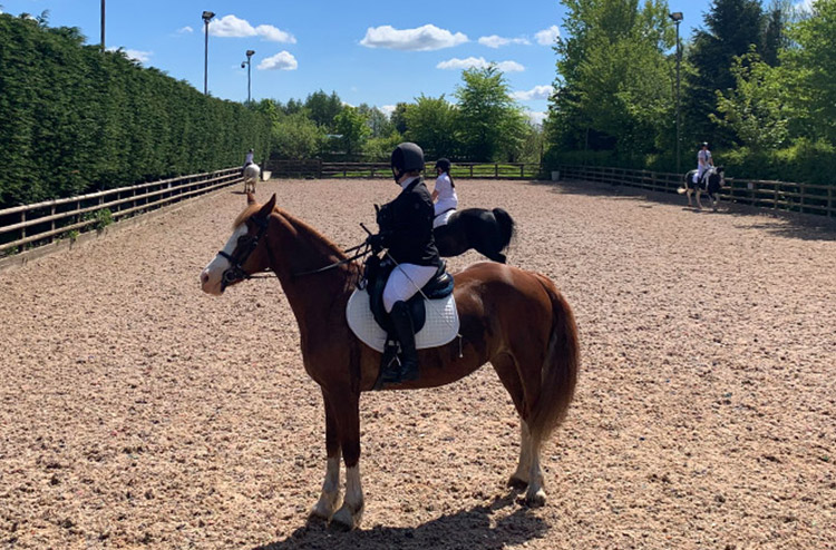 beginner-lessons-red-earth-equestrian-centre-bolton-edgworth