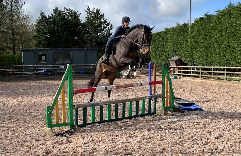 jumping-lessons-red-earth-equestrian-centre-bolton-edgworth
